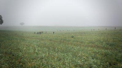 Field Trial<br><small>Confrançon/France '16</small>