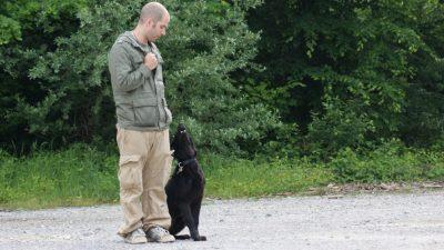 Hunde(führer)schule<br><small>Bremgarten '10</small>