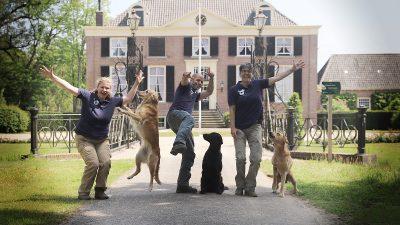 International Workingtest<br><small>Netherlands '19</small>