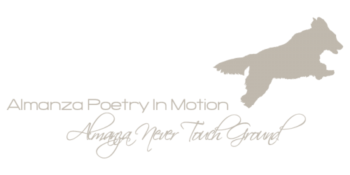 logo_poetry-and-never_lightbeige
