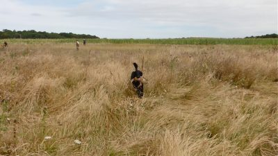 Chasse en Sologne<br><small>France '13</small>